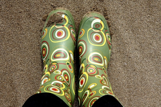 wellingtons-1021457_1280