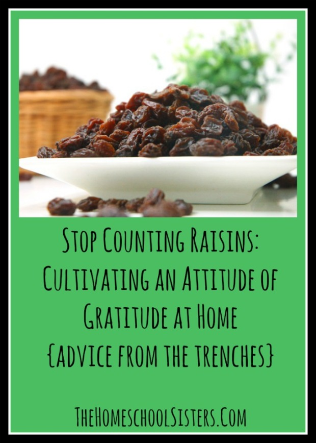 Stop Counting Raisins Cultivating an Attitude of Gratitude at Home {Advice From the Trenches}.jpg